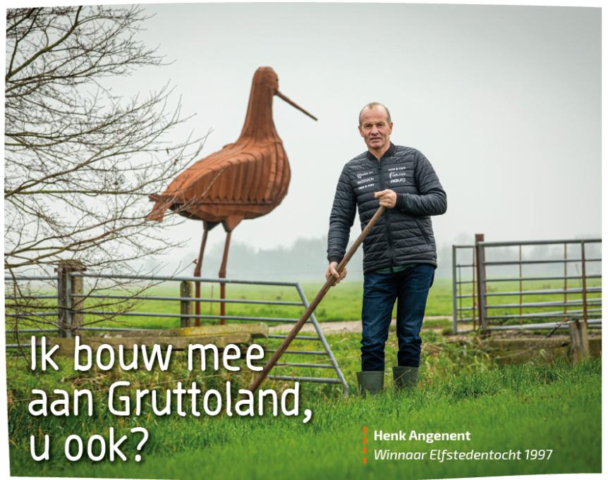 Henk Angenent - pommerant