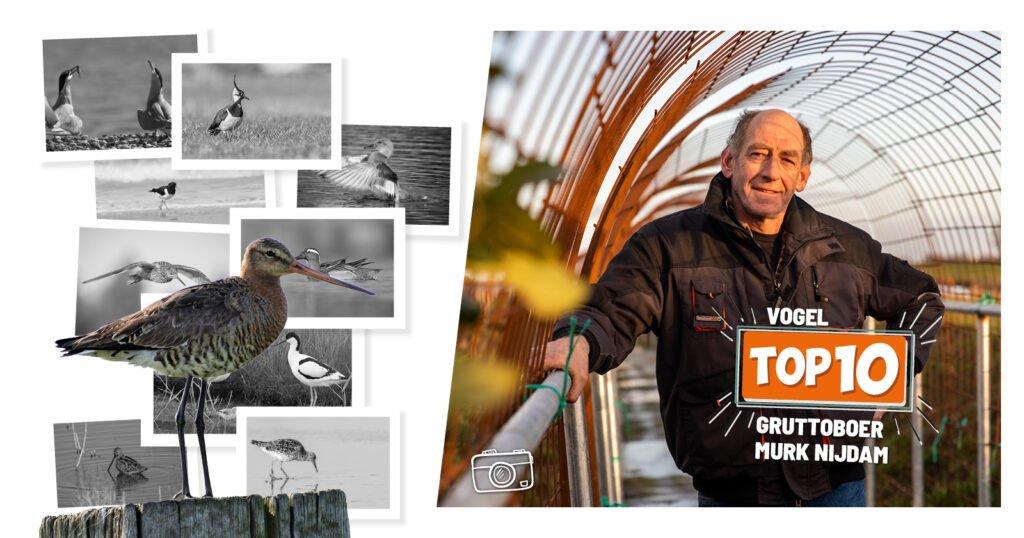 fotowedstrijd Murk Nijdam